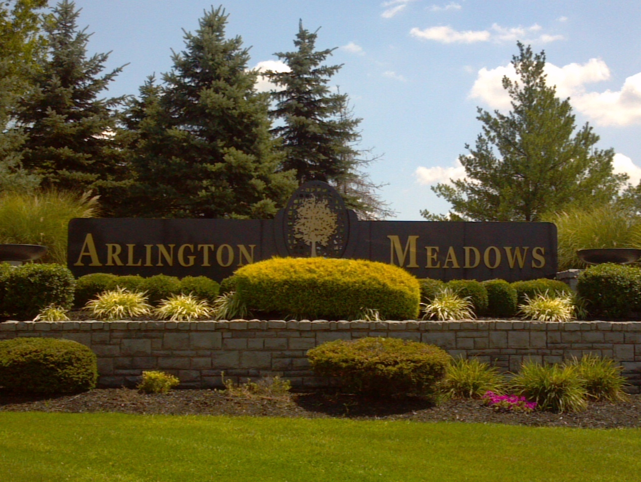 Arlington Meadows