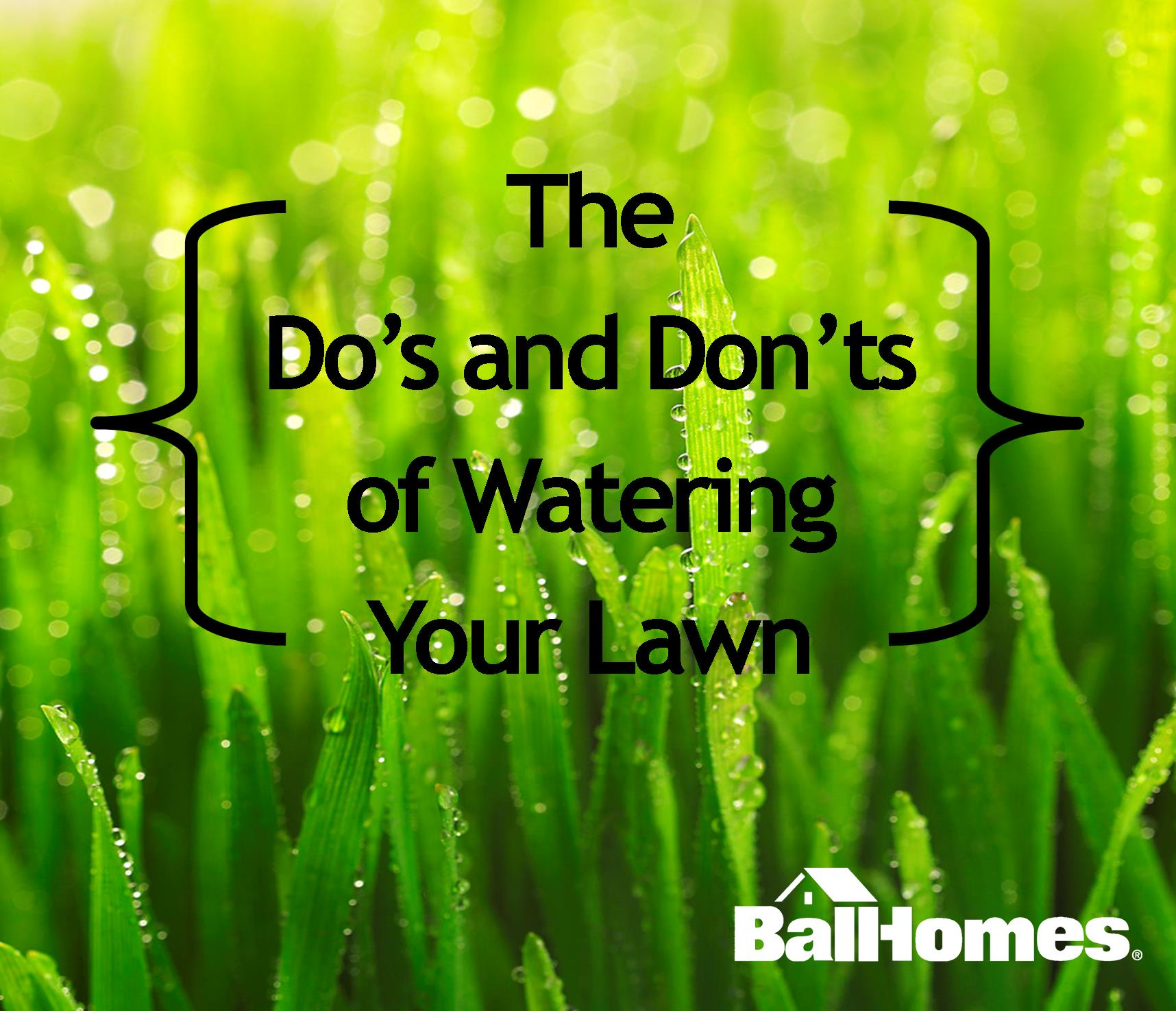 Watering Your Lawn The Do S And Don Ts